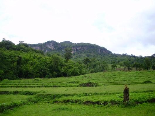Jungle trek Thailand