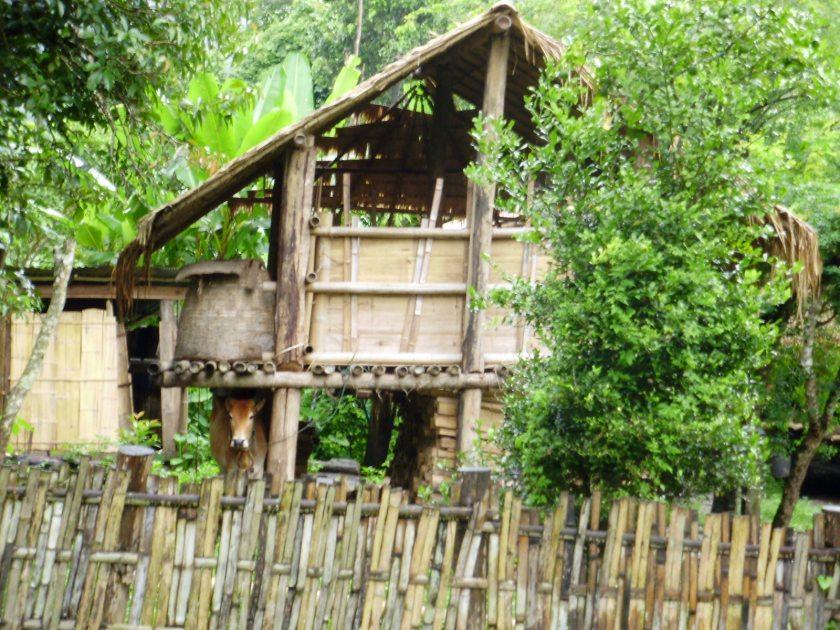 Thailand reisblog