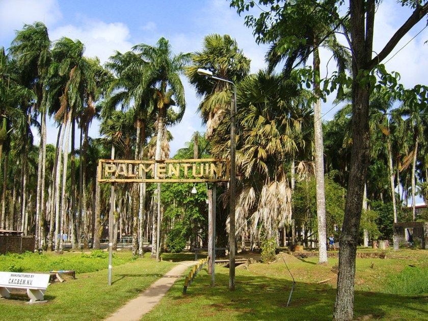 Tip dagje Paramaribo