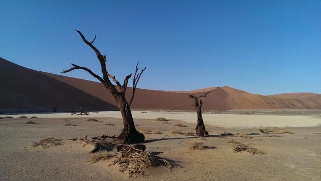 Rode zandduinen van Sossusvlei Namibia