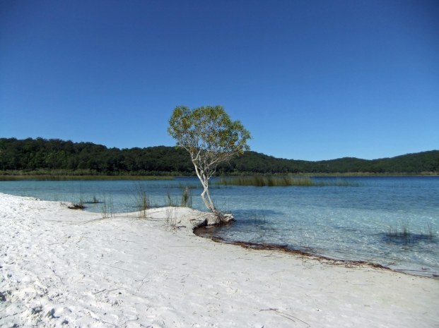 Frasier Island beach by lake