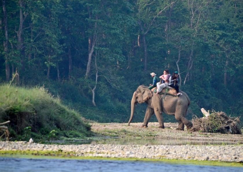 Olifantenrit tips tegen dierenleed