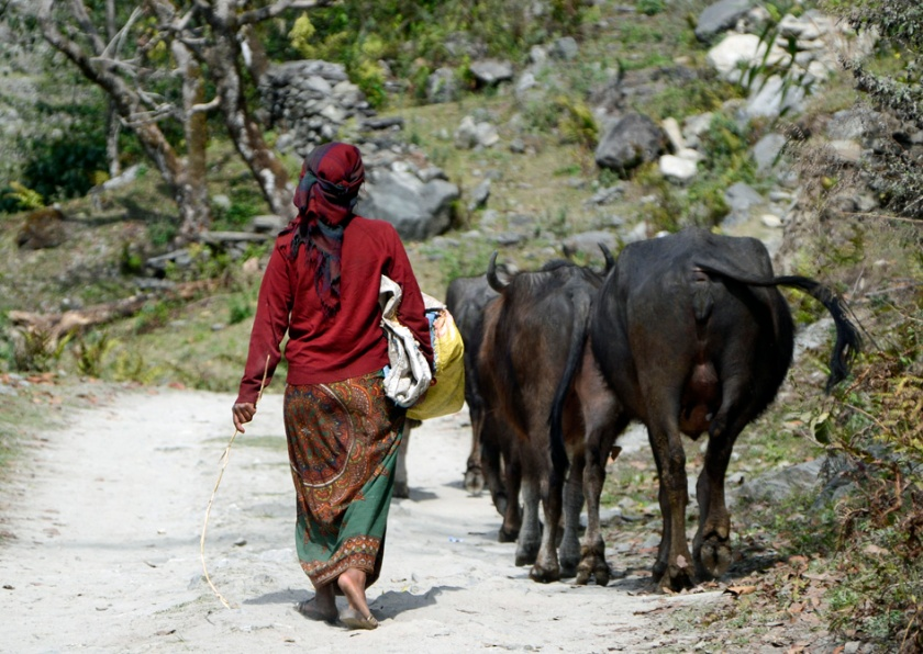 Nepal steunen blog reizen