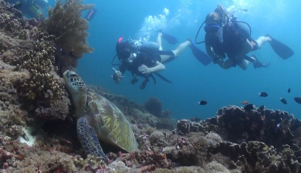 INdonesie scuba diving