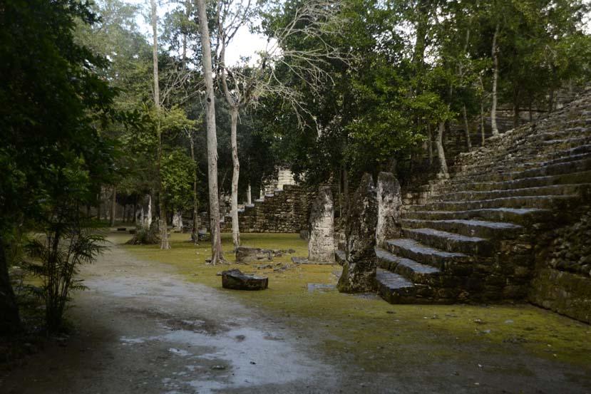 Calakmul MExico ruine maya