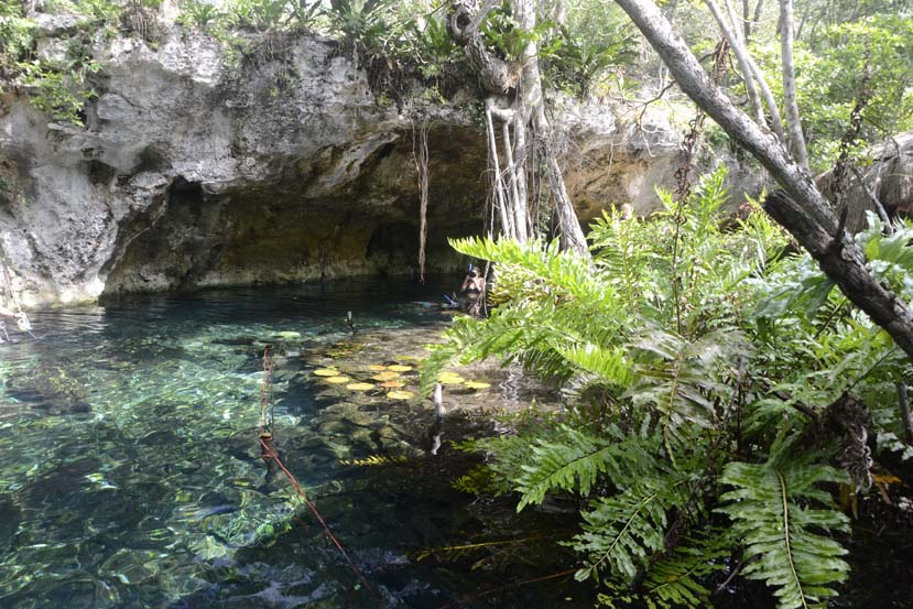 Grand cenote in Mexico Yucatan