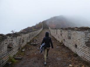 hiken-op-chinese-muur-wild-wall