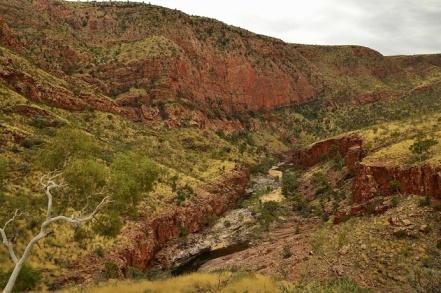 macdonald-ranges-outback-australie