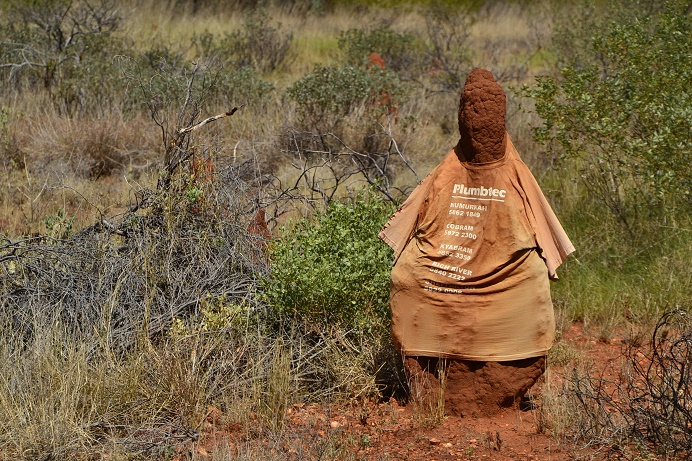 termietenheuvel-met-tshirt-outback-australie